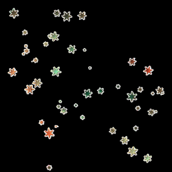 stars png pngs pngtumblr tumblr flower interesting art...