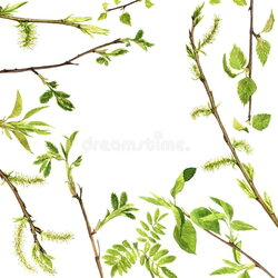 sticks clipart twig leaves