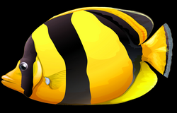 Yellow Chaetodon Butterfly Fish PNG Clipart - Best WEB Clipart