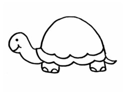 turtles clipart outline