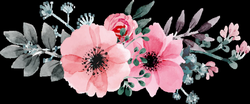 Image result for watercolor flowers png hd | ilustraciones ...