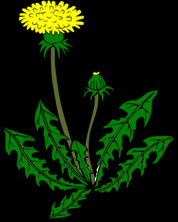 weeds clipart animated