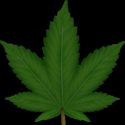 Weed Clip Art at Clker.com - vector clip art online, royalty free ...