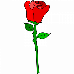 rose cartoon Cartoon rose pictures free download clip art png ...