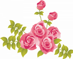Pink Roses Painted Picture Clipart | Gallery Yopriceville - High ...