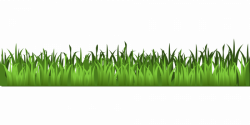 Meadow Green Grass Clipart | Isolated Stock Photo by noBACKS.com
