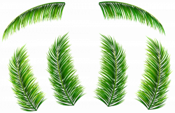 Palm Leaves PNG Clip Art Image | Gallery Yopriceville - High ...