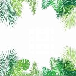 Tropical Leaves PNG Images | Vectors and PSD Files | Free Download ...