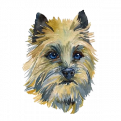 Yorkie clipart cairn terrier, Picture #305564 yorkie clipart cairn